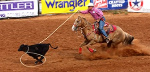 Calf Roping(tie-down Roping)